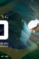 Billabong Rio Pro Special